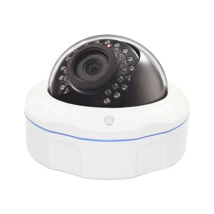 Outdoor IP66 Weatherproof WiFi Dome IP Camera-ODSM1308
