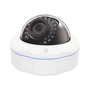 Outdoor IP66 Weatherproof WiFi Dome IP Camera